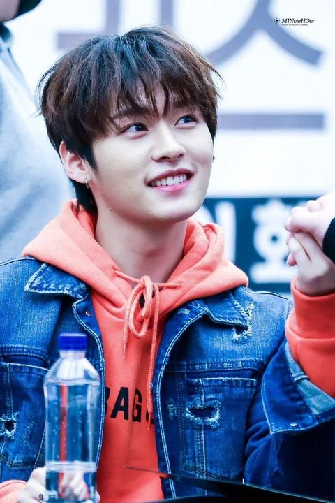 All About Kpop Lee Minho Lee Know Stray Kids Wattpad