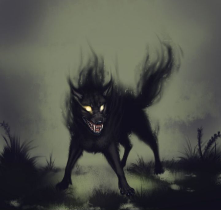 Others|| Arata has the ability to shapeshift and turn into a full Shadow Wolf this allows him to get more power but his sense and reason go out the window