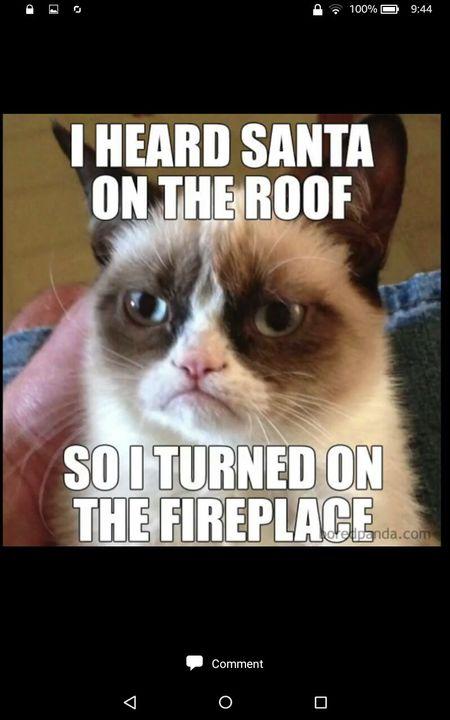 Dank Memes Boi Grumpy Cat Meme Wattpad #santa meme #christmas meme #random meme #starter sentences #sentence starters #sentence dear santa, i know i haven't written in forever, and i may not be the best all the time, but if i would. dank memes boi grumpy cat meme wattpad