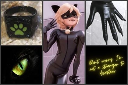 "Chat Noir""Don't worry"