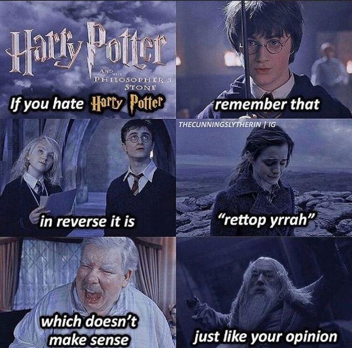 Harry Potter memes - If you hate Harry Potter... - Wattpad