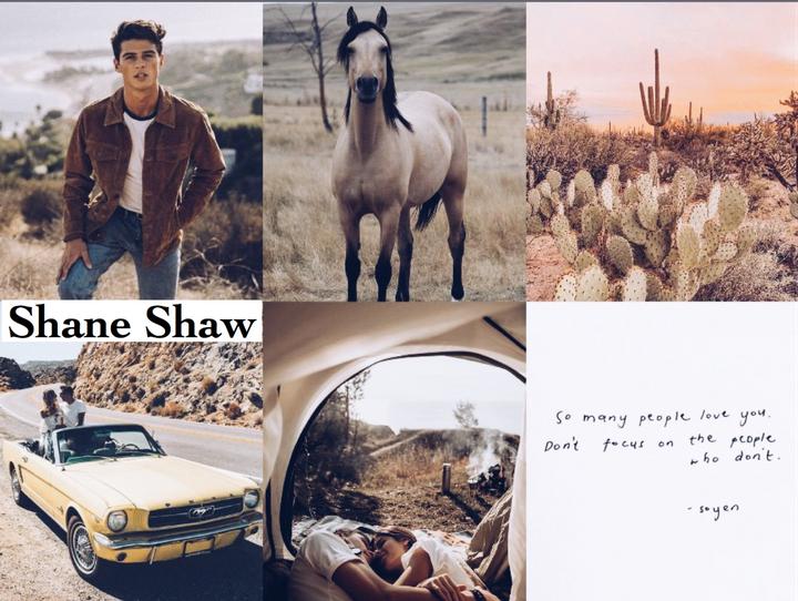 Shane Shaw