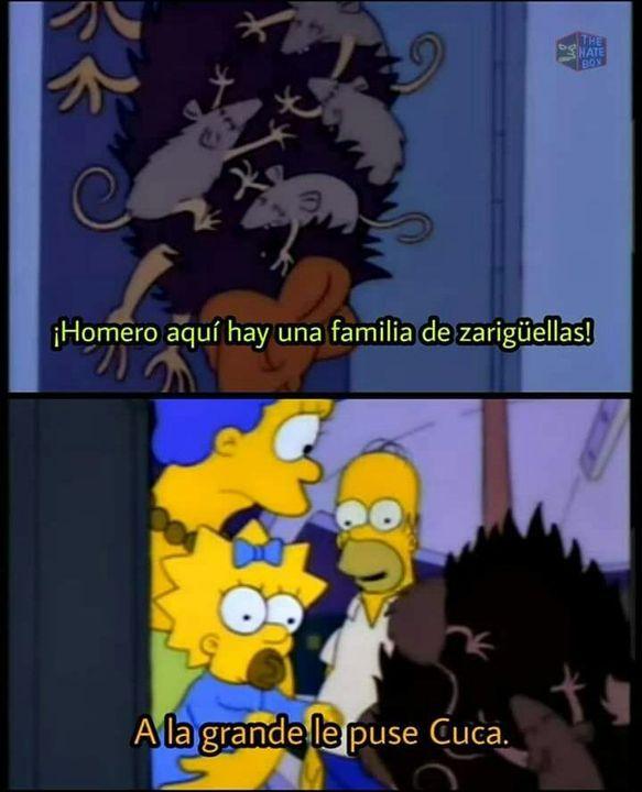 Frases Simpson! - Homero Simpson - Wattpad