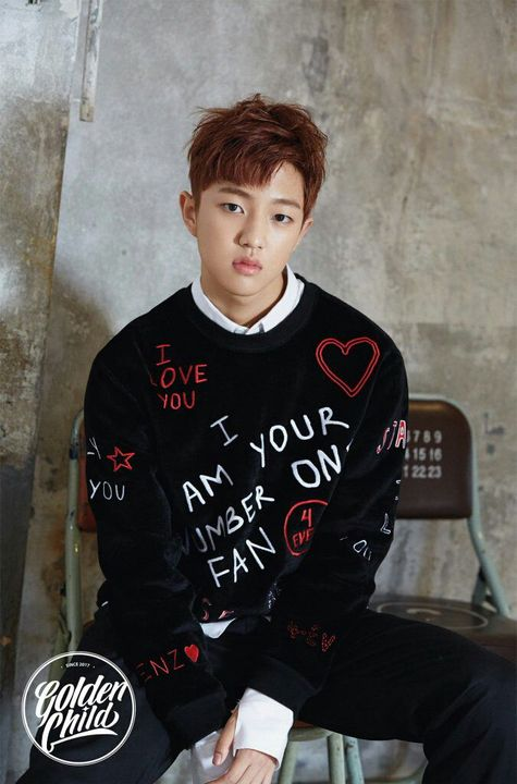 Golden Child Profiles And Facts Jaehyun Wattpad 재희 / jae hee (jae hui). golden child profiles and facts