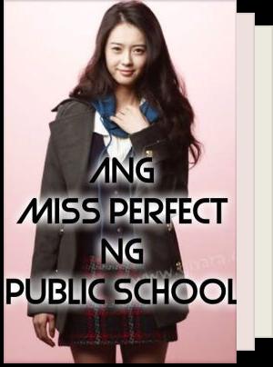 Miss Perfect Series