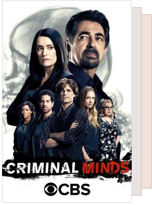 . ᵒ .༄ ࿐ ࿔*:・ CRIMINAL MINDS