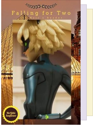 Chat Noir X Reader For Y'all~~
