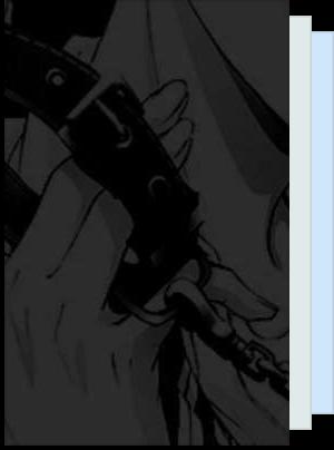 BL Novel