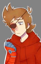 Loving My Enemy • Tord x Reader [¡¡UNDER CONSTRUCTION!!] by spoopytord