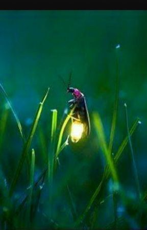 FireFly - A Sonnet by Me by LilRosiePose