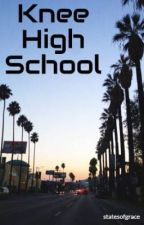 Knee High School by turtledotjava