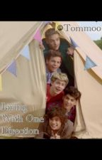 Living With One Direction by tommoo