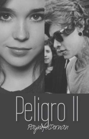 Peligro II- A Harry Styles Fan Fiction by paynefuldornan