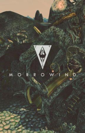 Cazadora de dragones [ Skyrim - Morrowind ] by VirtualBetta