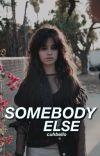 Somebody Else (Camila/You)  cover