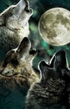 Green Wolves by JuliaP3321