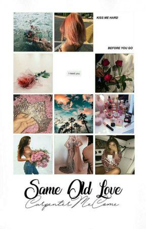 Same Old Love • Zayn Malik by rylexxvideos