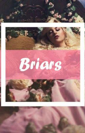 Briars ↬ D.M. by MissMeAgain