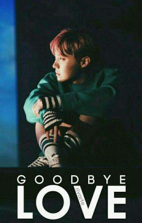 "goodbye love | jung hoseok x reader | sequel to ""dear happy."" by rivarte"