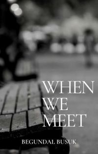 When We Meet [Rivaere] cover