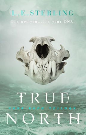 True North by LESterling