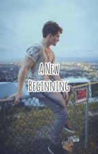 A New Beginning - a Quentin McConathy fanfic by JustMe4You2