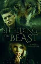 Shielding the Beast (discontinued)  by Silverless