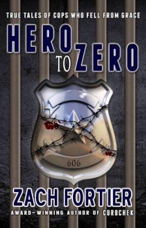 Hero To Zero excerpt by zachfortier