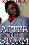After the Storm {Book 2} cover