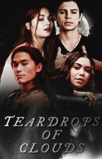 Teardrops of Clouds [1] | Teen Wolf by focusonmyvoice