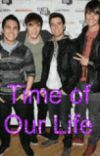 Time Of Our Life cover