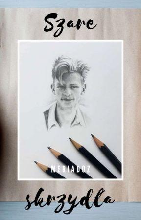 Szare skrzydła | artbook by meriadoz