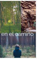 EN EL CAMINO by arqheidi