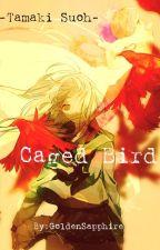 Caged Bird (Tamaki Suoh) by GoldenSapphire2