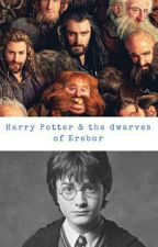 Harry Potter and the Dwarves of Erebor by jumpingmanatee