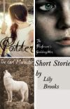 Short Stories(For Potter, HP & SB, and more) cover