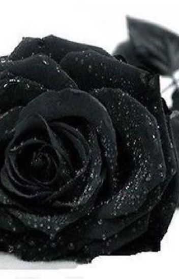 The black rose that grew in the jungle