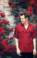 Harry's bio by OfficHarryEStyles