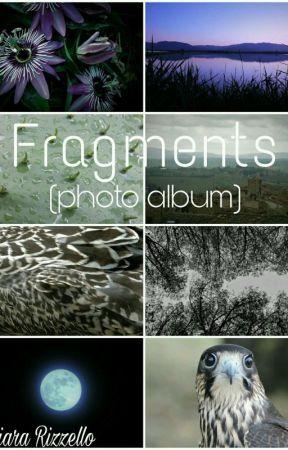 Fragments (photo album) by __shinon__