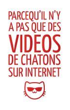 Parce qu'il n'y a pas que des vidéos de chatons sur internet by mesdamesduc