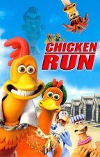 Kali and the Chicken Run by AdventureGirl5