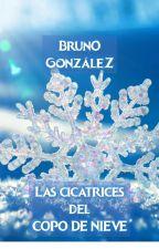 Las Cicatrices del Copo de Nieve by BrunoGonzlez8