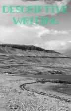 Descriptive writing help by judyjune234