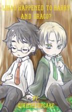 What Happened to Harry and Draco? by Queeniecupcake