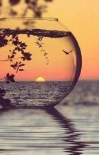 değerli hayat by senaa721