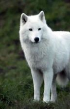 Spirit Wolf: LOTR by BiancaEvans2