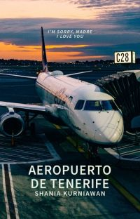 Aeropuerto de Tenerife cover