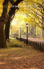 le taxi de Central Park by nonore38