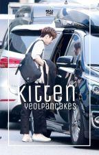 kitten | kim donghyun. by silkydonghan