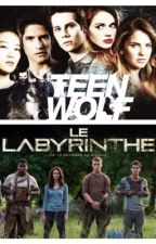 Préférences et imagines ~ THE MAZE RUNNER ~ TEEN WOLF by -PrettyMoonlight